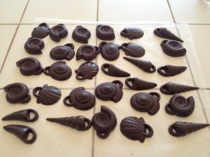 Chocolate fossils. Yum.
